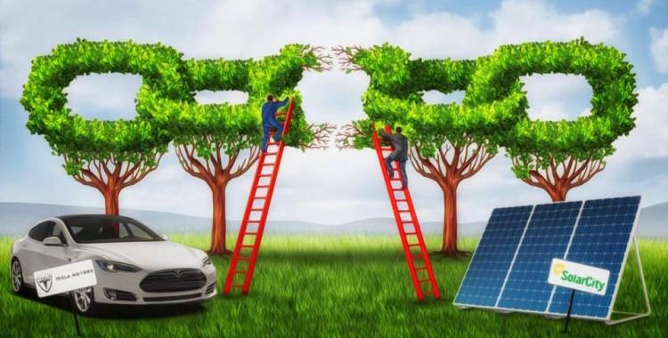 Tesla's Race to the Sun